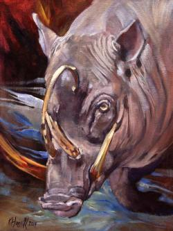 Babirusa by Kitty Harvill