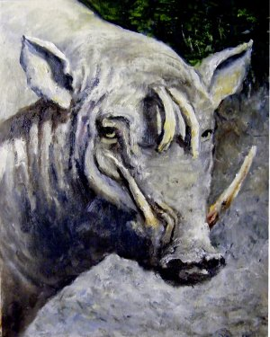 babirusa_virginia_potter