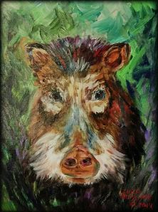 White-lipped peccary by Ellen Hobgood
